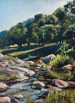 J P Childress - Plum Creek