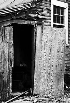 Plywood Door by Sasha Wolfe