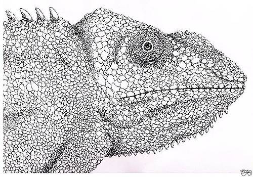 Pointillist Chameleon  by Ben Leary