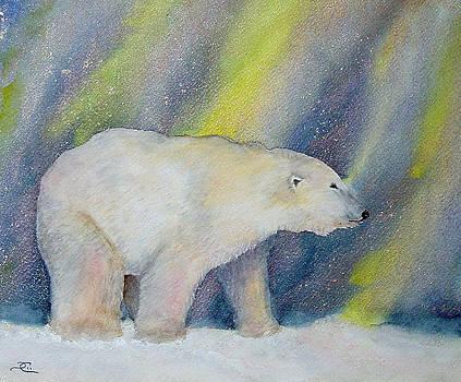 Dee Carpenter - Polar Lights