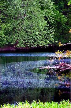 Pollen Lake by Esther Luna