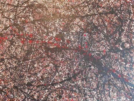 Pollock Study 1 by Robert Foss