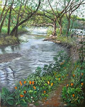 Pond at the end of Easy Street by Lorna Saiki
