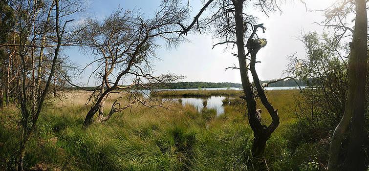 Pond by Erik Tanghe