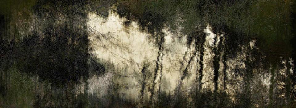 Pond by Janet Kearns