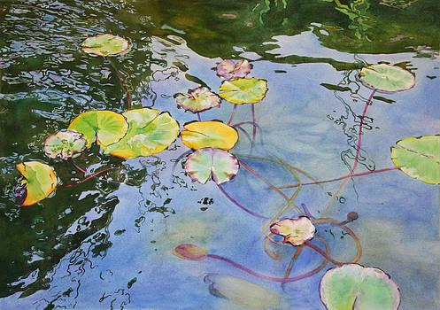 Pond Patterns by Kathleen Ballard