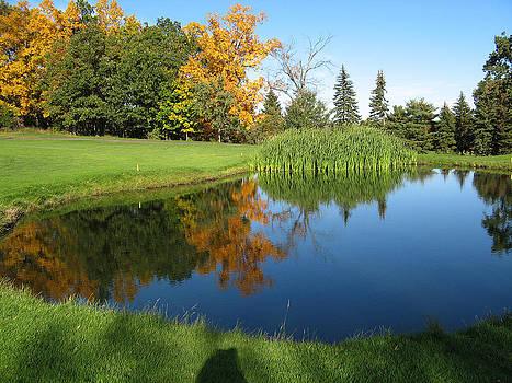 Pond reflections by Leontine Vandermeer