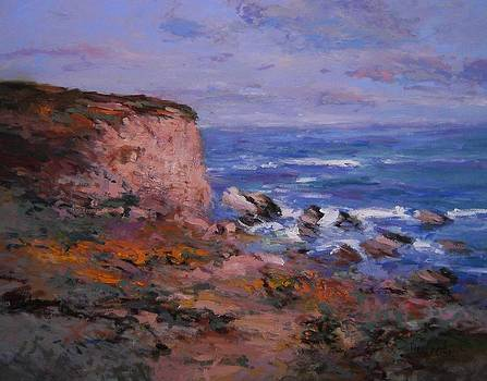 Poppies at Montana de Oro Beach by R W Goetting