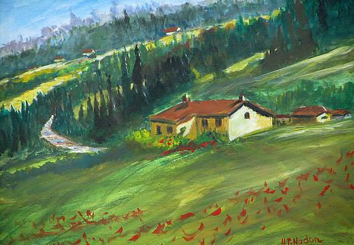 Poppies in Tuscany by Heidi Patricio-Nadon