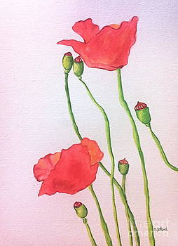 Poppies by Norma Gafford
