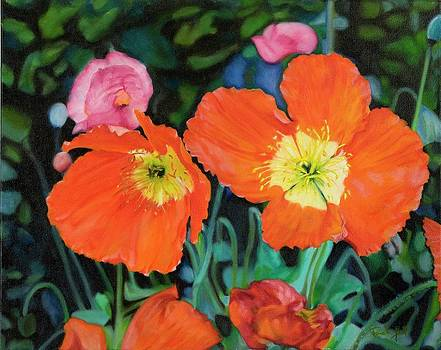 Poppies by Pamela Bell
