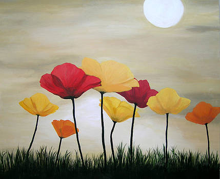 Poppies Worshipping the Sun by Amy Scholten