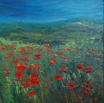 Poppy Field by Terri West