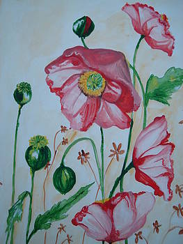 Poppy by Seema Sharma