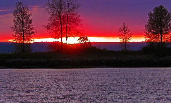 Port Gardner Bay Sunset by Seth Shotwell