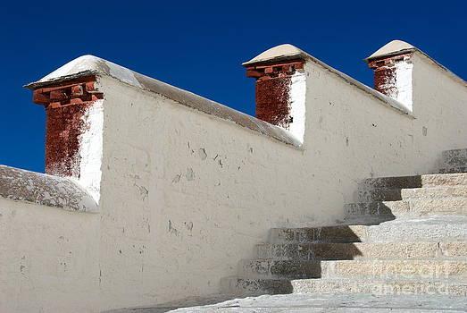 Potala stairs by Tomaz Kunst