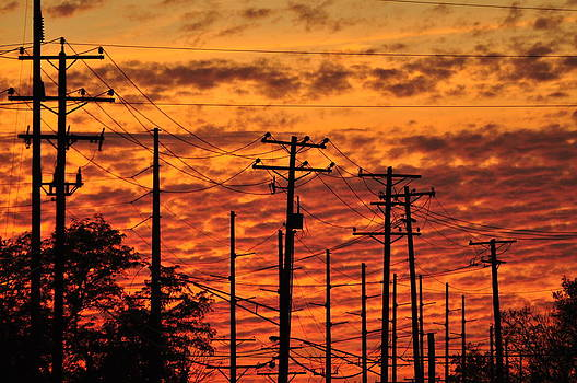 Power Lines  by Peter  McIntosh