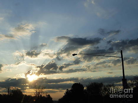 Power Lines by Trish Hale