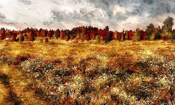 Prairie in a Dream by Erica Horsley