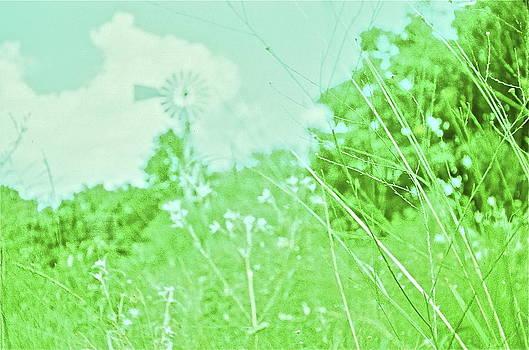 Prairie by Mirii Elizabeth