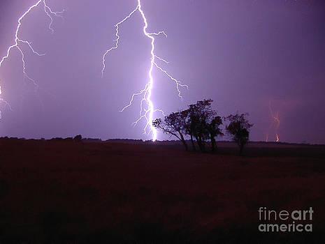 Prairie Storm by Art Hill Studios