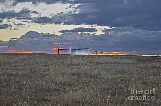 Prairielands' Sunset by Suze Taylor
