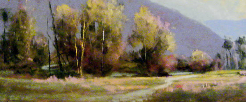 Prarie Creek by Tom Christopher