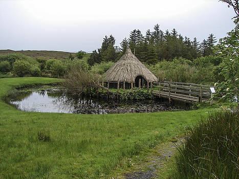 Pre Historic Pond House by Ralph Brannan