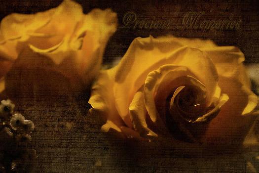 Scott Hovind - Precious Memories