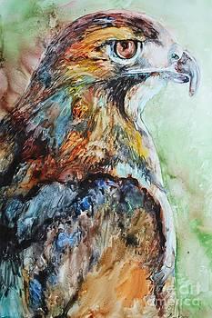 Predator by Kate Lagaly