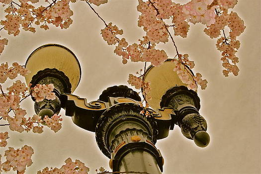 Pretty Portland by Emily Nothnagel