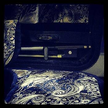 Pretty #violin #case by Luise Sommer