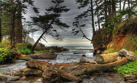 Primal Creek by Melvin Kearney