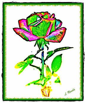 Primary Rose by Leslie Revels