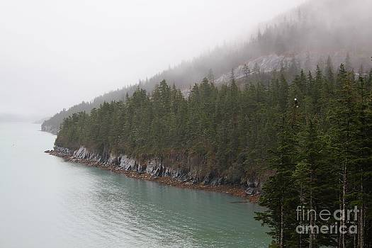 Prince William Sound Shoreline by Theresa Willingham