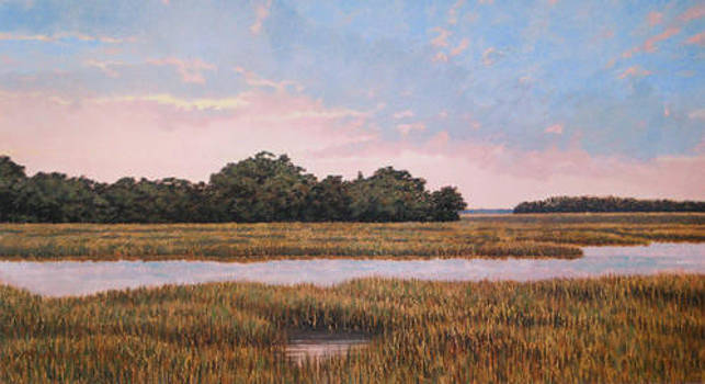 PRINT Marsh Light by Michael Story