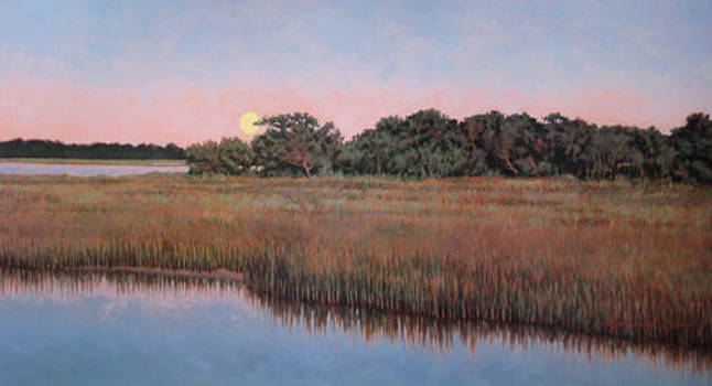 PRINT Moonlit Marsh  by Michael Story