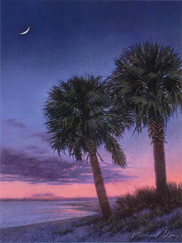 PRINT Palmetto Evening by Michael Story