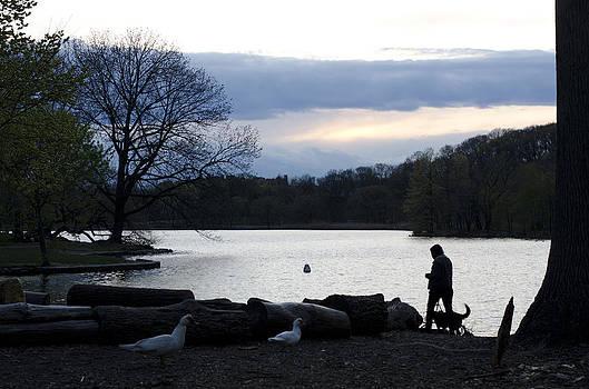 Prospect park lake by Marcel Krasner