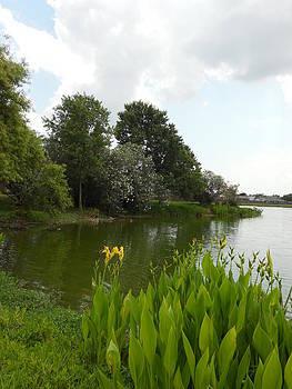 Providence Lakes in Springtime by Dorothy Riley