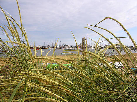 Provincetown MA by Ben Gormley