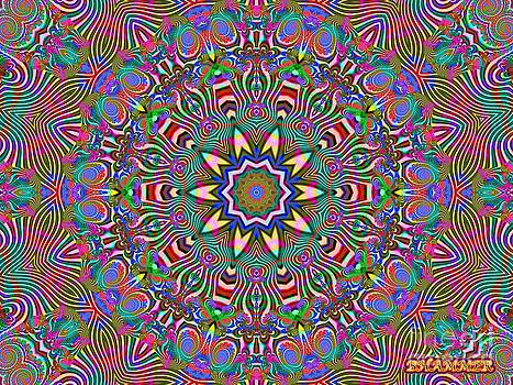 Psychozebra by Bobby Hammerstone