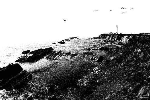 Mick Anderson - Pt Arena Lighthouse with Effect