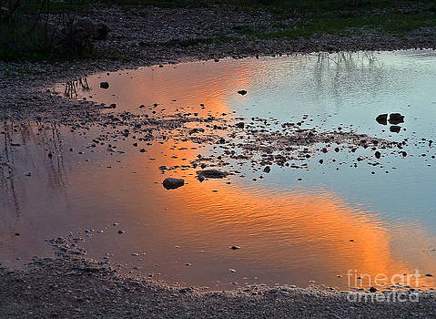 Puddle by Mary Attard