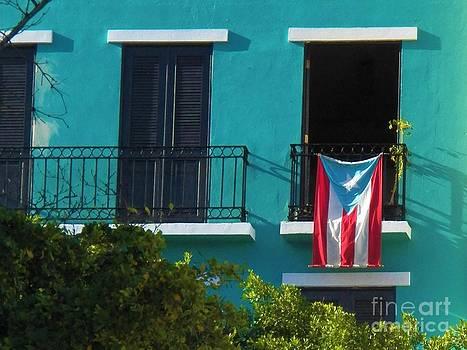 Puerto Rico Pride by Melanie Snipes