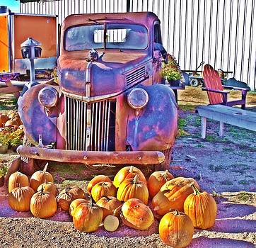 Pumkin Patch 2 by Dave Dresser