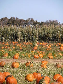 Kimberly Perry - Pumpkin Patch