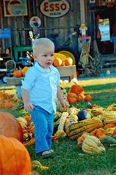 Pumpkin by Phil Burton
