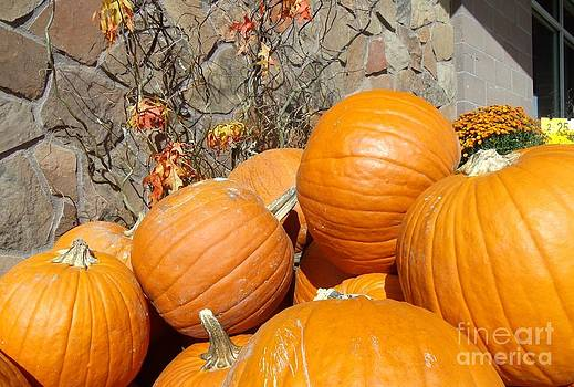 Pumpkins-2 by Donna Parlow