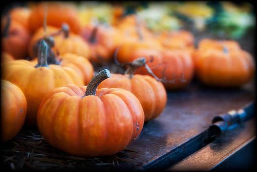 Pumpkins by Barry Kirsch